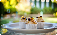 Rum Raisin Cupcakes photo by isayx3