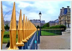 PARIS photo by LUIS FELICIANO