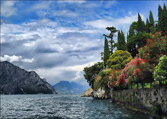 View North from Malcesine - Lake Garda, Italy photo by Ellie Ellis