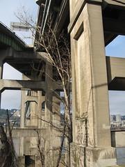 East End of the Ross Island Bridge