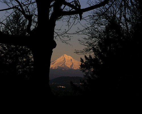 Mt. Hood from Mt. Tabor.