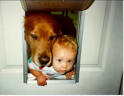 toddler and dog fight for the chance to be the first one through the doggie door