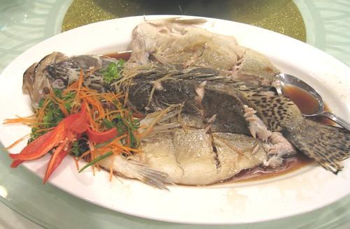 Gui Hua fish