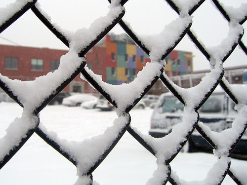 Snow Day 1716