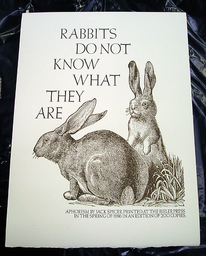 Rabbits do not know what they are / Jack Spicer