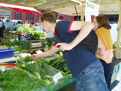 Picking%20Basil%20in%20Basel