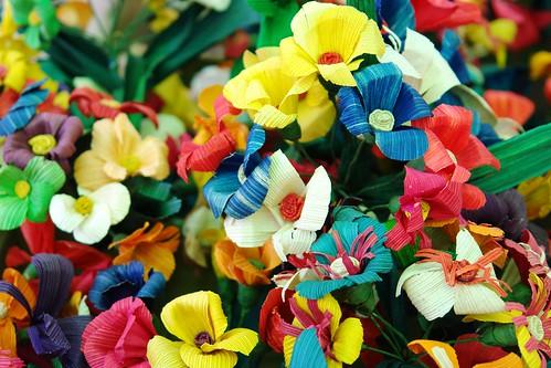corn's flowers