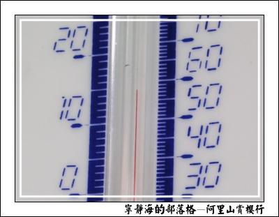 阿里山賞櫻行_15度?