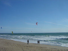 Scotts Creek Beach - Kite Surfers II
