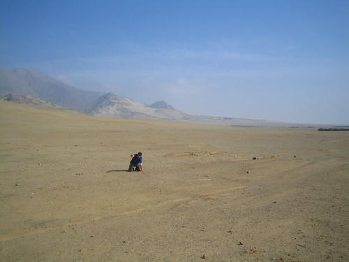 Micah, dying in the dessert
