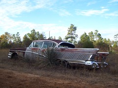 Abandoned 50's Buick photo by Valentinian