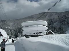 積雪、電線と接触