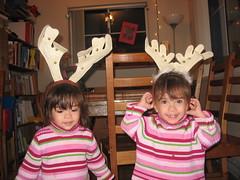 Reindeer twins
