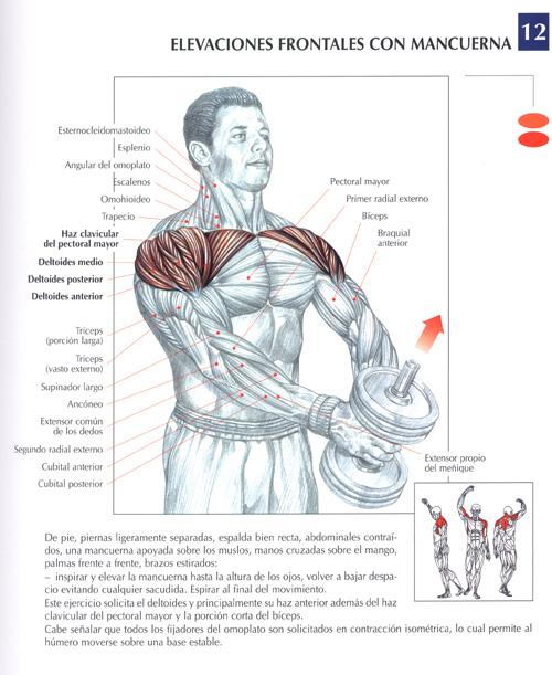 La gimnasia a la columna vertebral a los dolores en los riñones