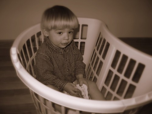 Simon in a laundry basket