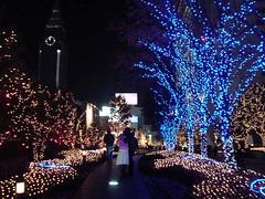 Shinjuku051209