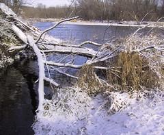 creektocrowriver