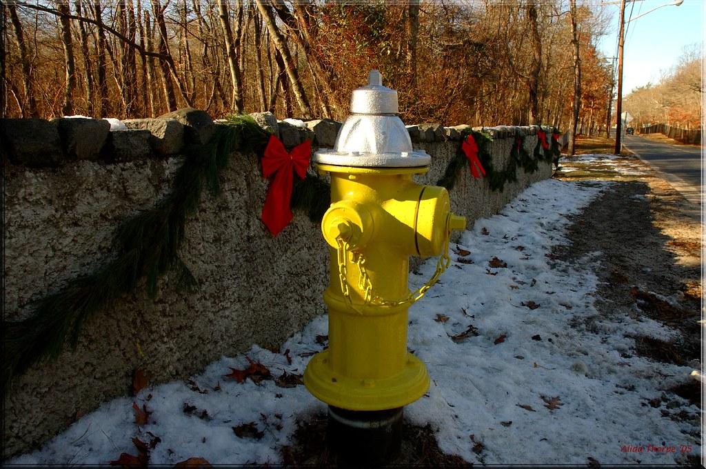 Holiday Hydrant