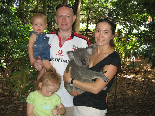 family_koala_1