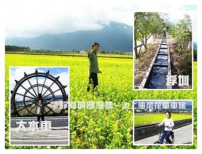 夏季感冬之旅_0118_池上油菜花景點