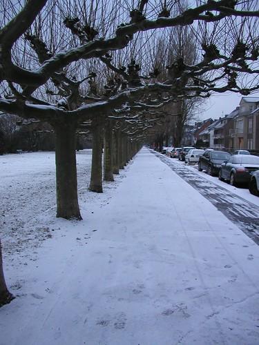 January 2006 Snow 007