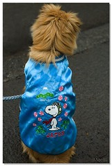 Snoopy's jumper