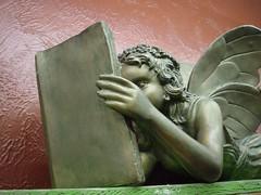 reading_fairy