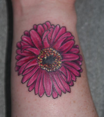 Gerbera Daisy Wrist Shot  Close up! photo by SmashFire Designs