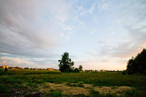 Poland View