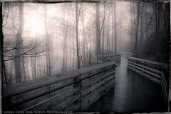 Foggy Dream and Mysterious Path photo by :: Igor Borisenko Photography ::