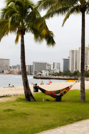 waikiki_beach_lazy_day.gif