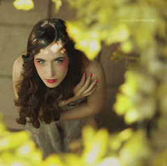 The yellow Corner photo by Lucia Rubio