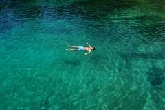 fancy a swim? photo by andreas n