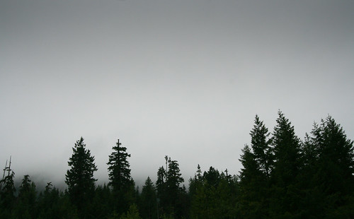 Mount Rainier. No, really