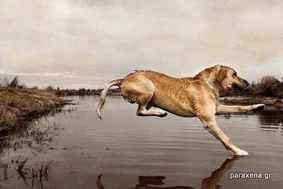 run-on-water-19