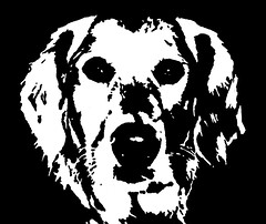 Golden Retriever Black & White Stencil Dog Art Print photo by Pupaya