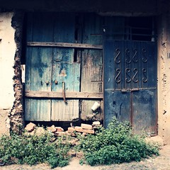 Take me Home photo by memo.michel