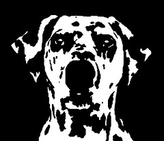 Dalmatian Black & White Stencil Dog Art Print photo by Pupaya