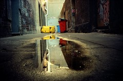 watering hole photo by mugley