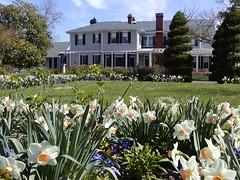 Spring Bloemendaal House