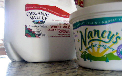 Yogurt ingredients