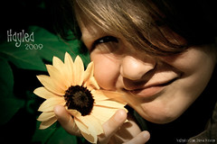 Haylea_Sunflower photo by Your Dream Touch Photography