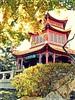 Chinese Garden 13