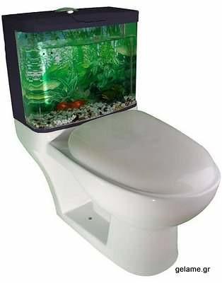 unusual-toilet18