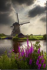 Windmill @ Kinderdijk photo by DolliaSH