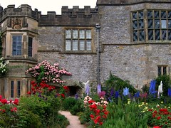 Roses and Delphiniums at Haddon Hall photo by UGArdener