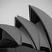 Sydney-6828 © Bart Plessers