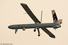 BBIWY - Elbit Systems Hermes 450 UAV  Israel Air Force