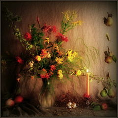Autumnal Still Life photo by Arunas S