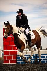 Show Jumping, Patrington-8271